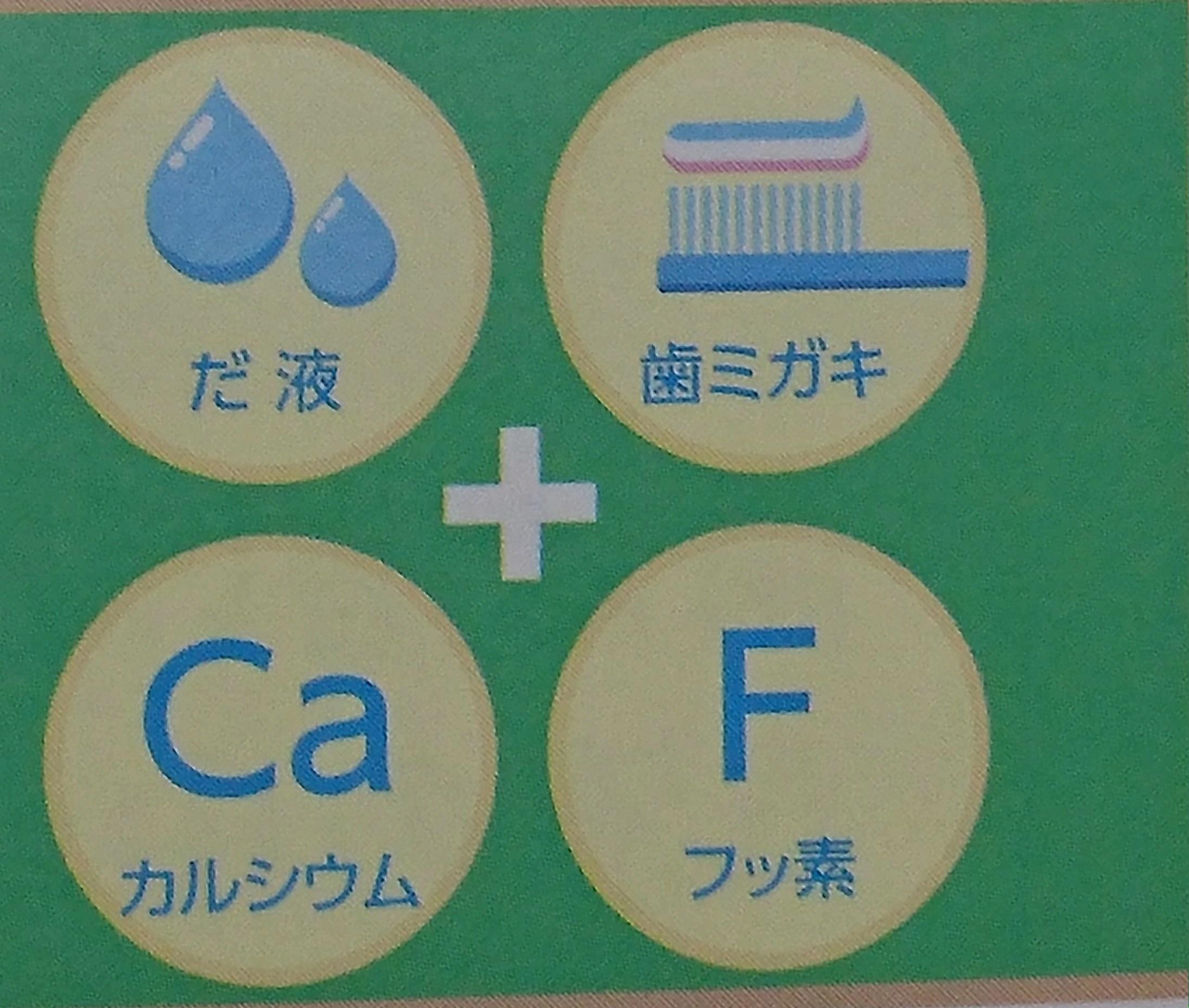 カルシウム フッ素 唾液 歯磨き