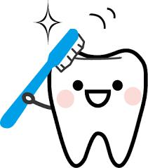 乳幼児の歯磨き方法